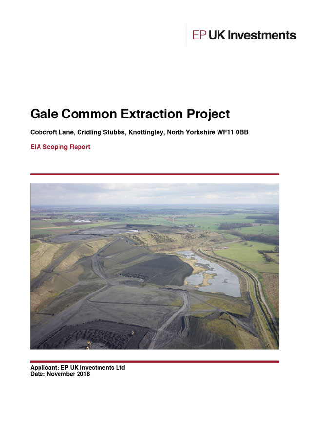 gale common scoping report